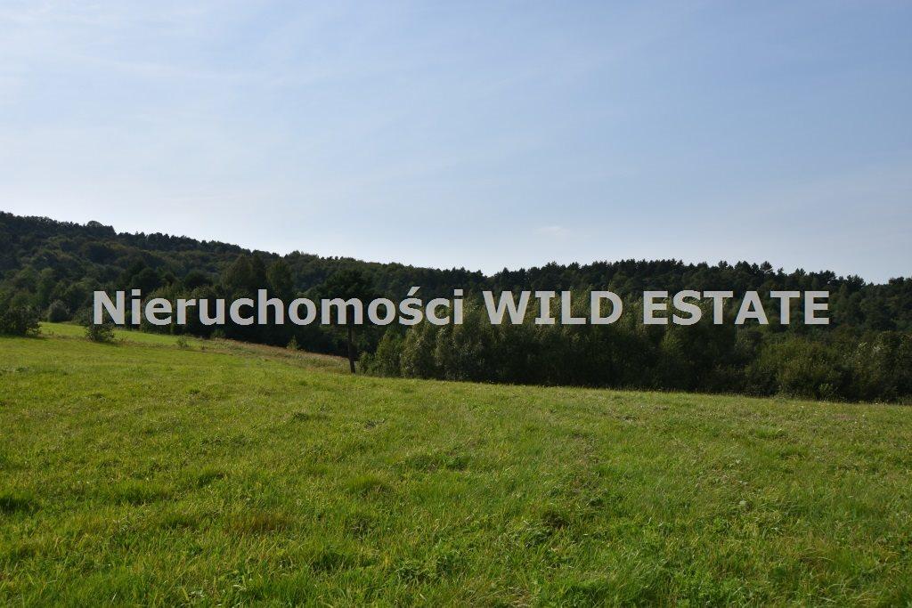 Działka rolna na sprzedaż Baligród, Zahoczewie  180184m2 Foto 3