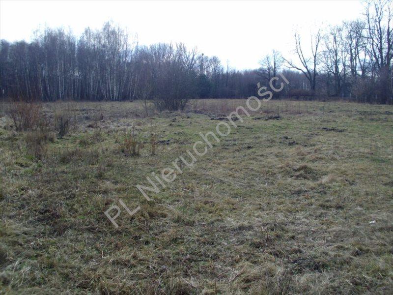 Działka rolna na sprzedaż Mszczonów  20000m2 Foto 4
