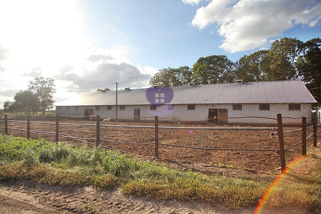 Działka rolna na sprzedaż Suwałki  2610000m2 Foto 4