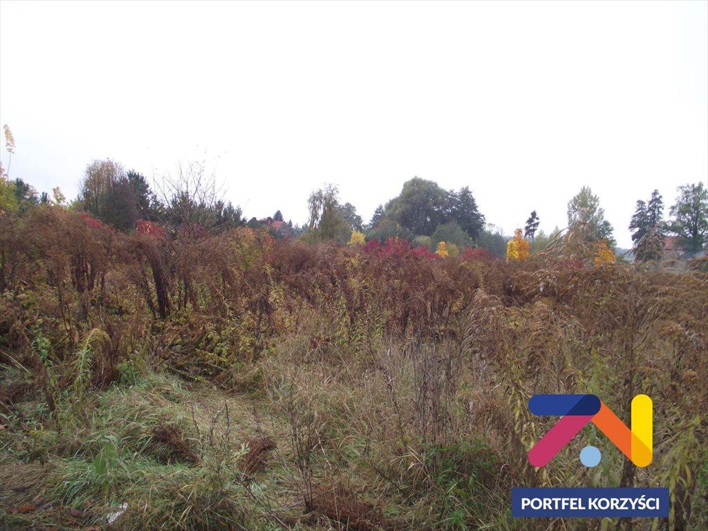 Działka budowlana na sprzedaż Droszków  1300m2 Foto 1