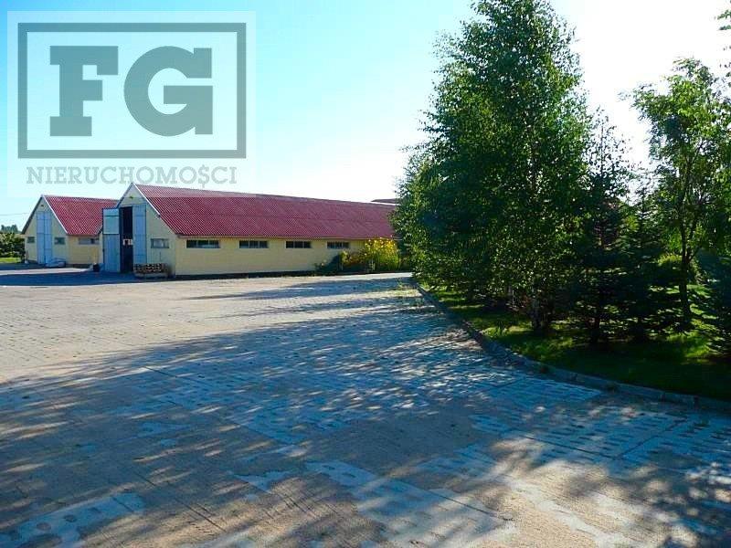Lokal użytkowy na wynajem Juszkowo, Cisowa  351m2 Foto 2