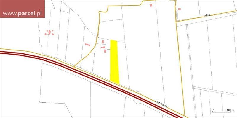 Działka rolna na sprzedaż Brzeźno  9500m2 Foto 2