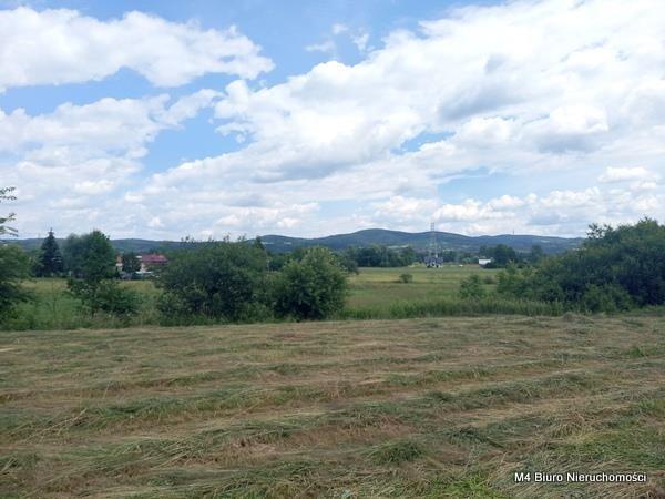 Działka budowlana na sprzedaż Krosno, Turaszówka  4200m2 Foto 4