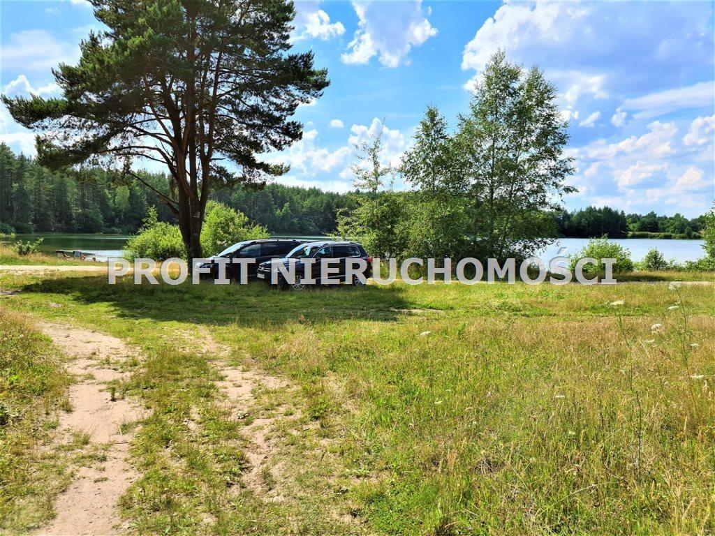 Działka leśna na sprzedaż Linia  77931m2 Foto 3