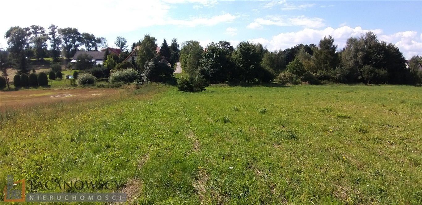 Działka rolna na sprzedaż Bolechowice  3000m2 Foto 4