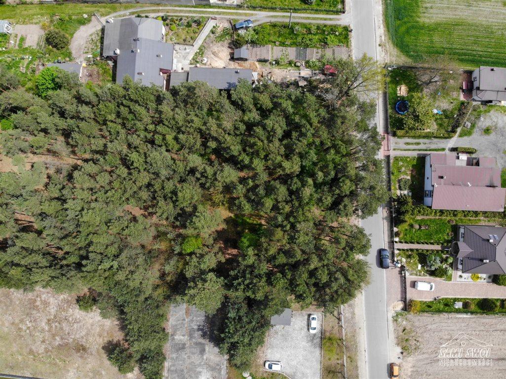 Działka leśna na sprzedaż Pożdżenice  6206m2 Foto 3