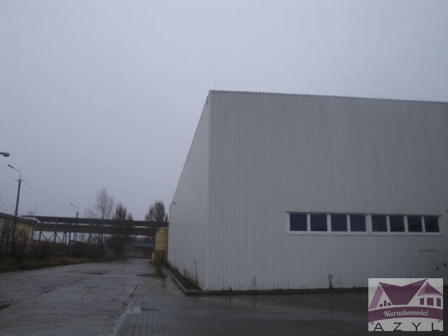 Lokal użytkowy na wynajem Bydgoszcz, Brdyujście  1803m2 Foto 4