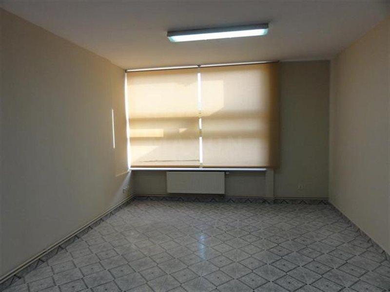 Lokal użytkowy na sprzedaż Wieliszew, Okolice Zegrza  982m2 Foto 5