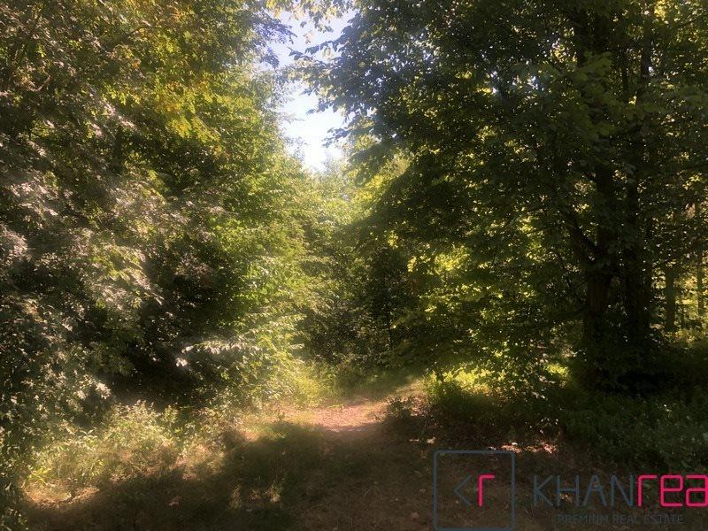 Działka leśna na sprzedaż Sobików  15000m2 Foto 1