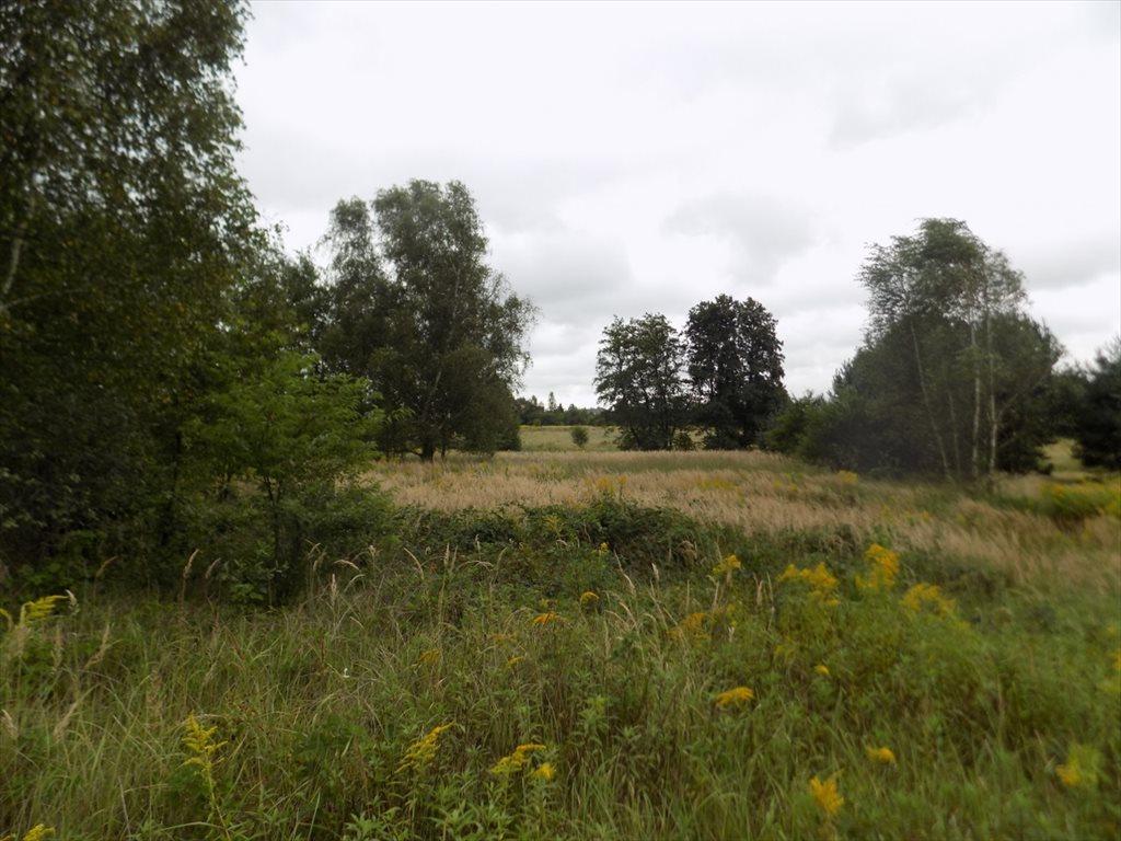 Działka rolna na sprzedaż Katowice, Podlesie  1581m2 Foto 6