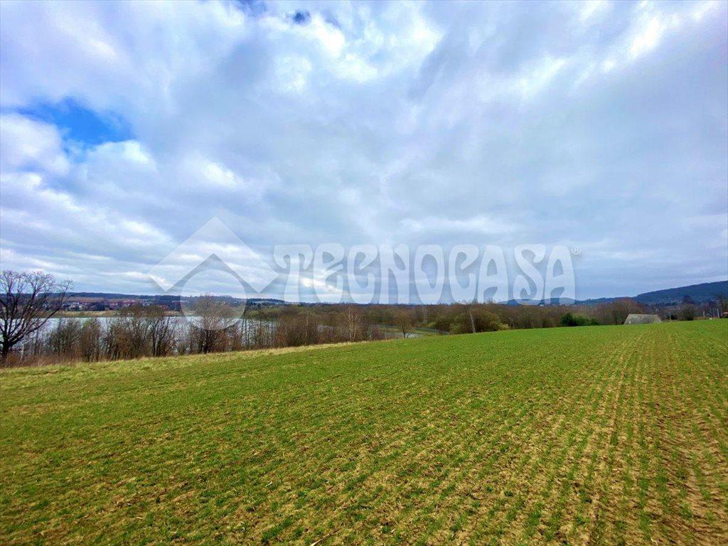 Działka rolna na sprzedaż Kraków, Bronowice, Mydlniki, podkamyk  5580m2 Foto 3