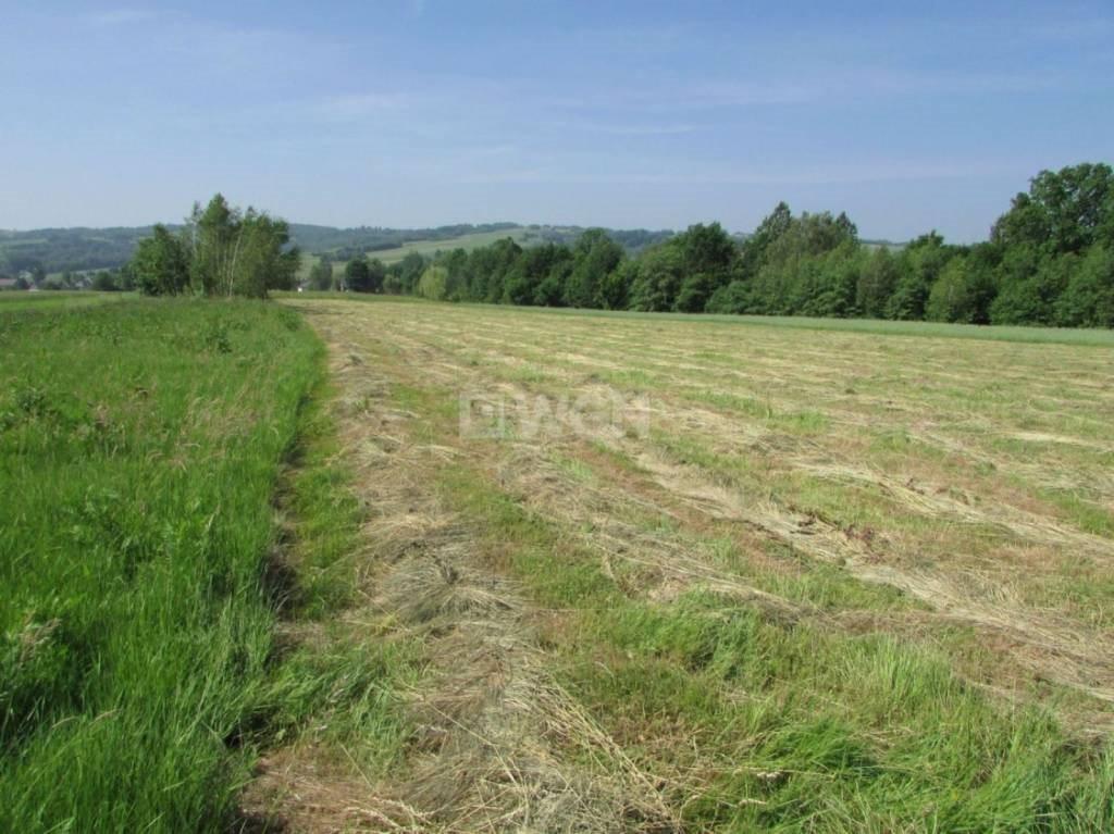 Działka rolna na sprzedaż Harta, Harta, Harta  2411m2 Foto 4