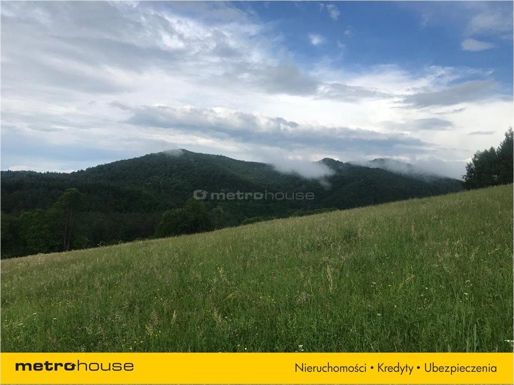 Działka rolna na sprzedaż Bukowiec, Solina  13100m2 Foto 4