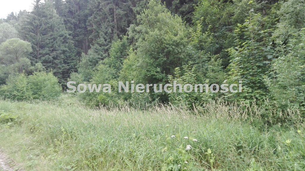 Działka inna na sprzedaż Mieroszów, okolice Mieroszowa  3900m2 Foto 7