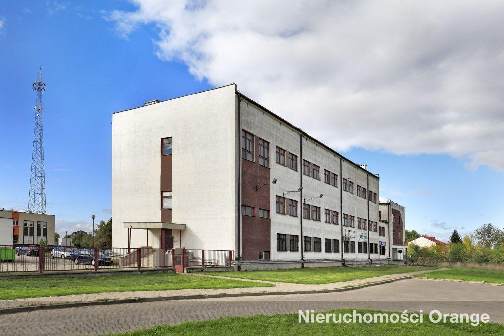Lokal użytkowy na sprzedaż Łęczna  3633m2 Foto 5