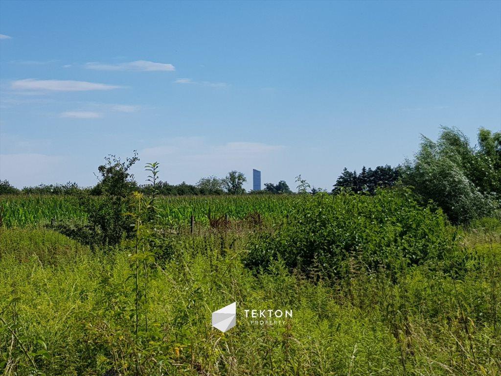 Działka rolna na sprzedaż Mokronos Dolny, Morelowa  3000m2 Foto 2