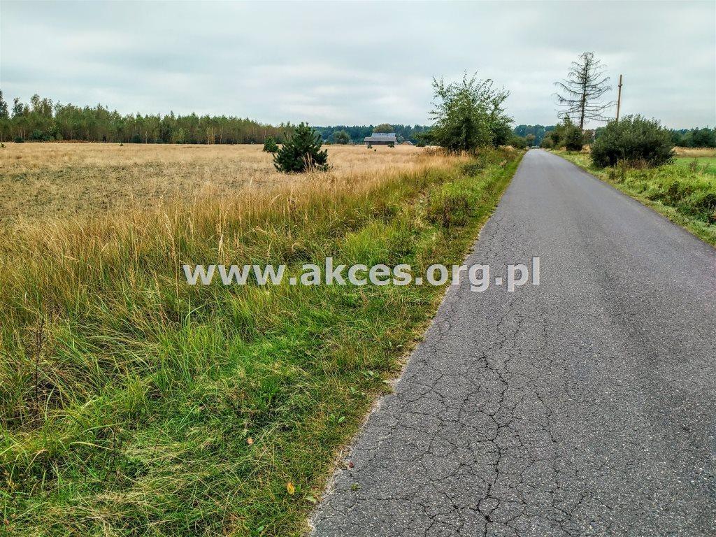 Działka siedliskowa na sprzedaż Nowa Wieś  3100m2 Foto 1