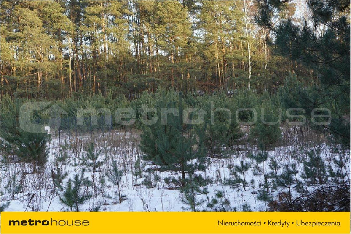 Działka leśna na sprzedaż Ruda-Bugaj, Aleksandrów Łódzki  3146m2 Foto 3