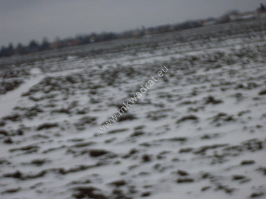 Działka siedliskowa na sprzedaż Ołtarzew  6433m2 Foto 8