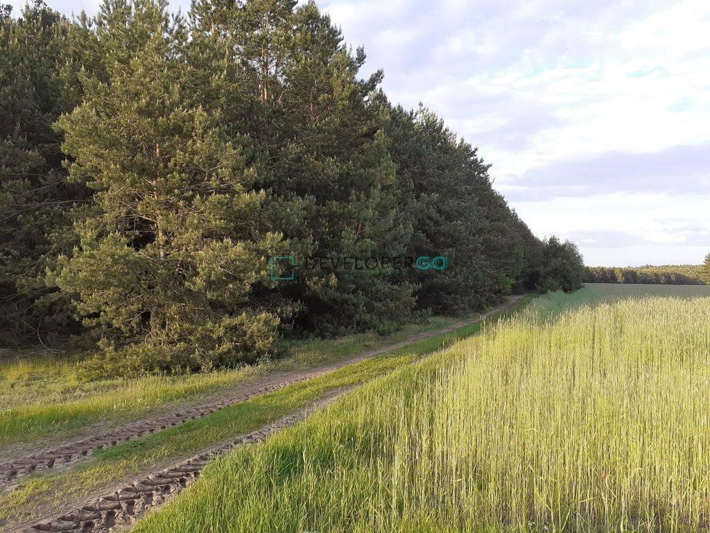 Działka leśna na sprzedaż Zakrzewek  17900m2 Foto 1
