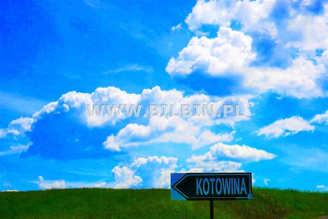 Działka siedliskowa na sprzedaż Kotowina  5666m2 Foto 10
