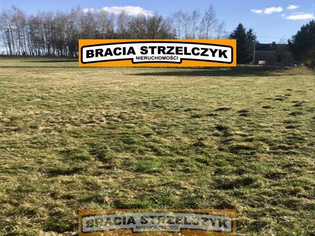 Działka rolna na sprzedaż Górka Powielińska  5500m2 Foto 1