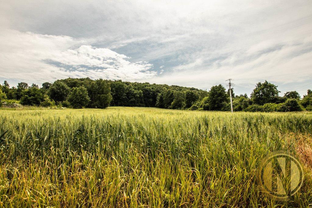 Działka rolna na sprzedaż Kraków, Wola Justowska, Wola Justowska  3396m2 Foto 4