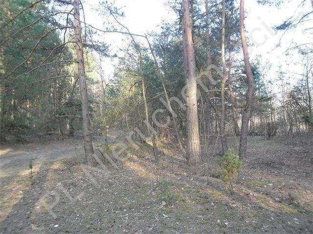 Działka rolna na sprzedaż Stanisławów  21520m2 Foto 4