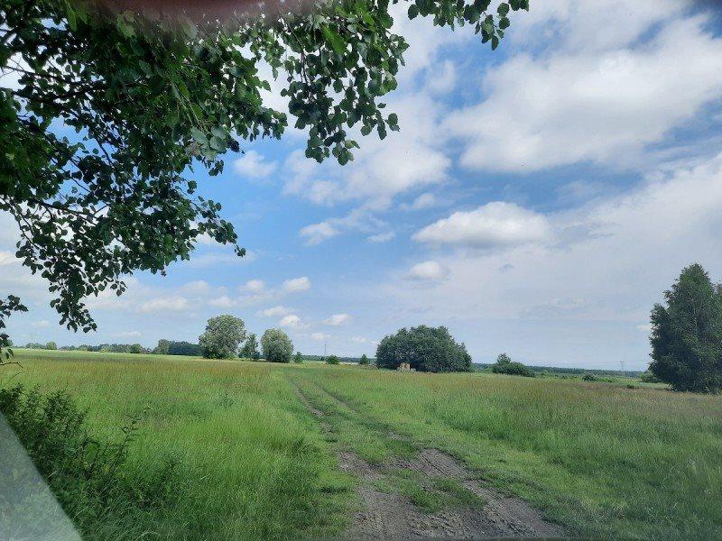 Działka rolna na sprzedaż Kampinos, Wola Pasikońska  3000m2 Foto 5