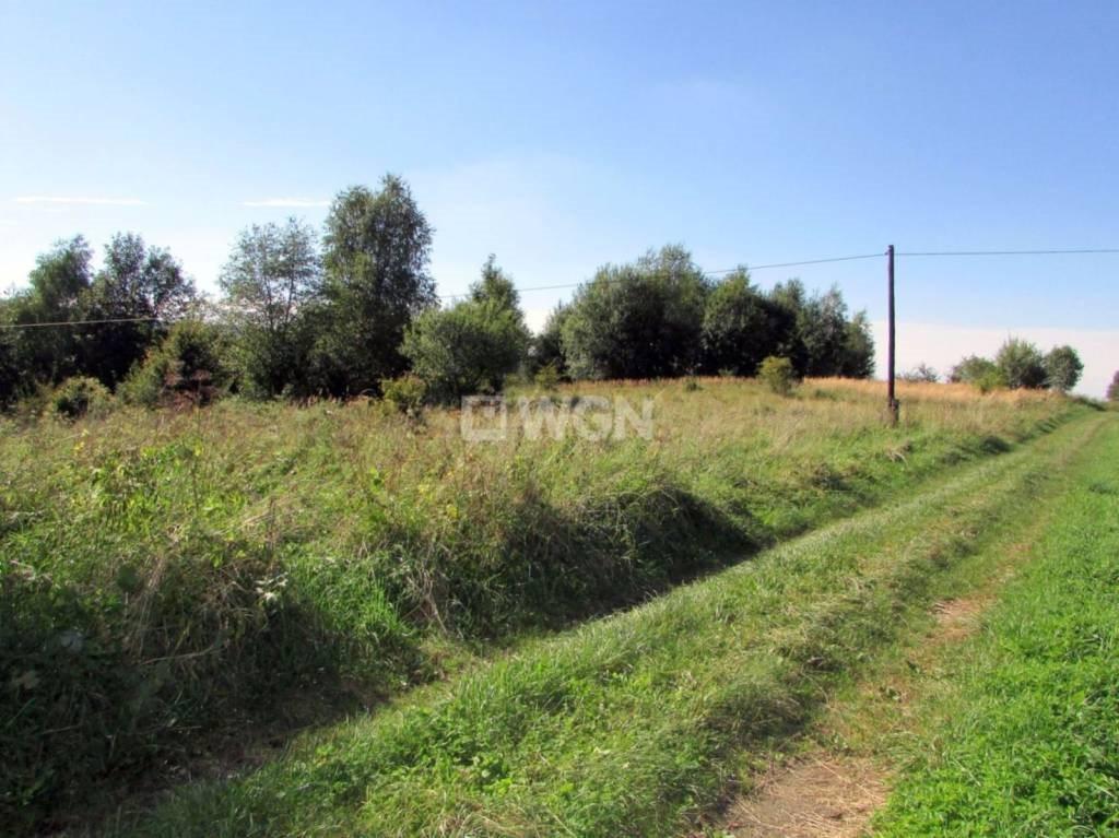 Działka inwestycyjna na sprzedaż Krzywe, Krzywe, Krzywe  31100m2 Foto 7