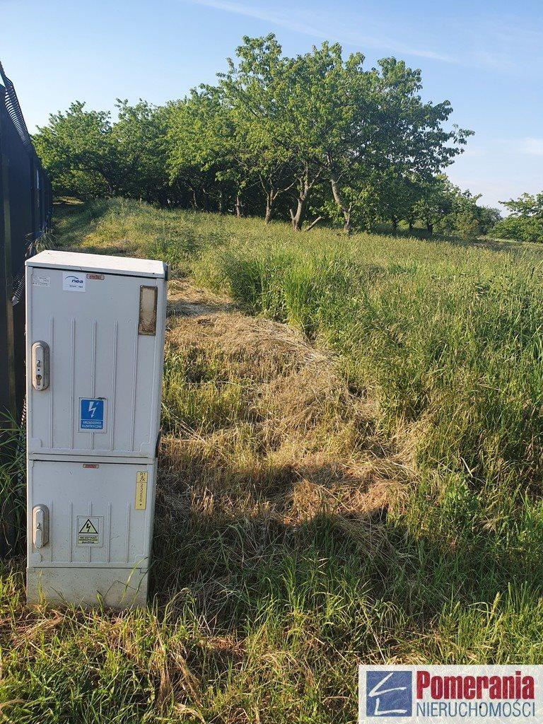 Działka rolna na sprzedaż Stobno  3012m2 Foto 2