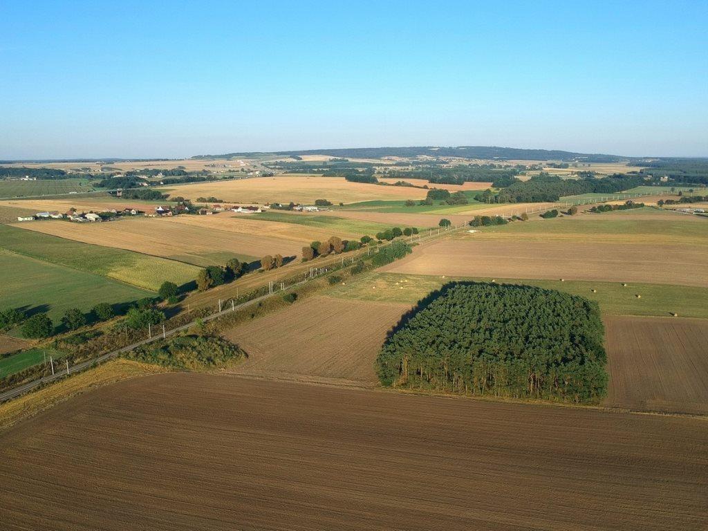 Działka leśna na sprzedaż Gogolin, Wygoda  25540m2 Foto 1
