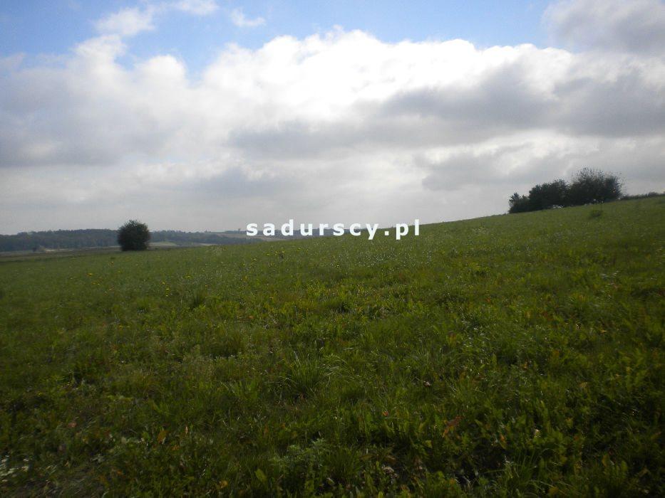 Działka rolna na sprzedaż Gołyszyn  28520m2 Foto 5