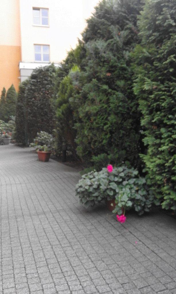 Mieszkanie dwupokojowe na wynajem Szczecin, Stare Miasto  55m2 Foto 11