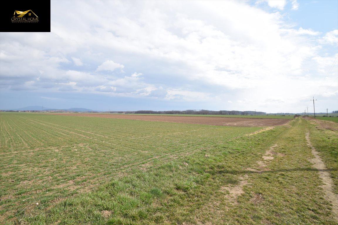Działka rolna na sprzedaż Burkatów  23600m2 Foto 6
