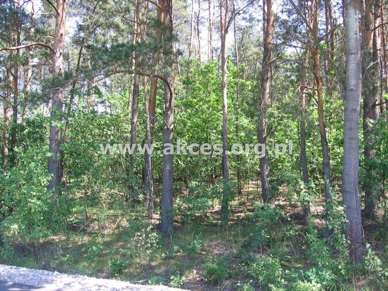 Działka budowlana na sprzedaż Budy-Grzybek  8500m2 Foto 4