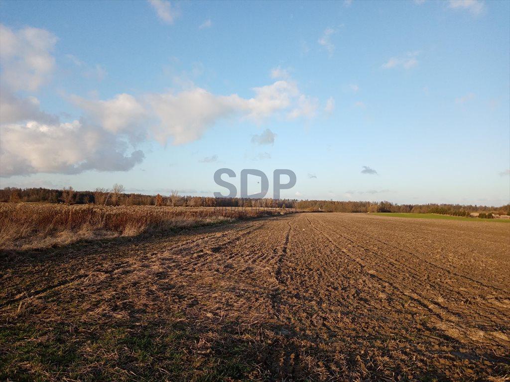Działka rolna na sprzedaż Bogdaszowice  53800m2 Foto 2