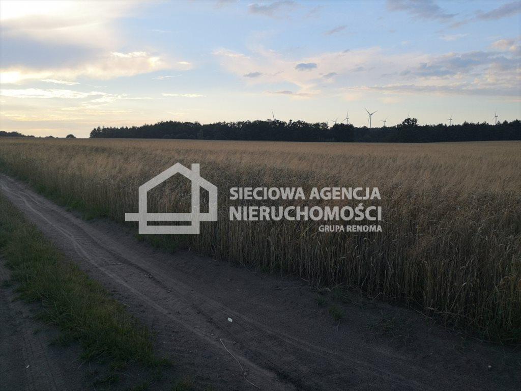 Działka rolna na sprzedaż Białogarda  148300m2 Foto 9