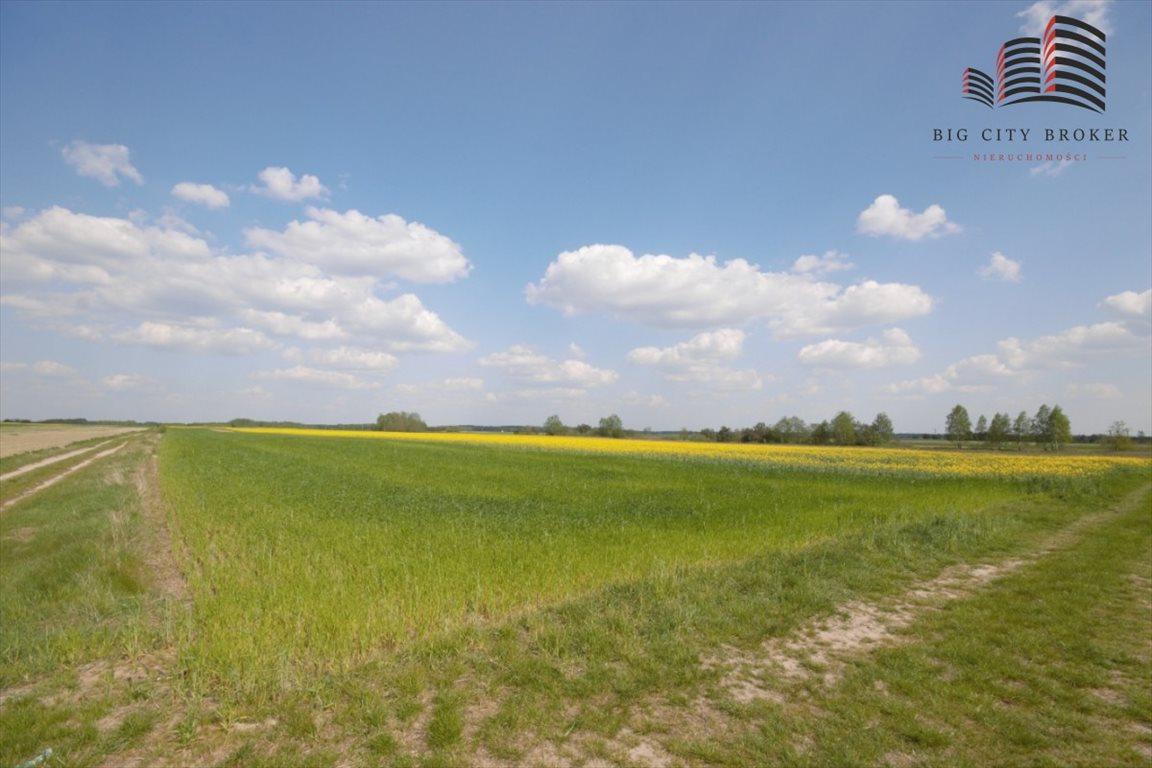 Działka rolna na sprzedaż Zabiele  55600m2 Foto 1