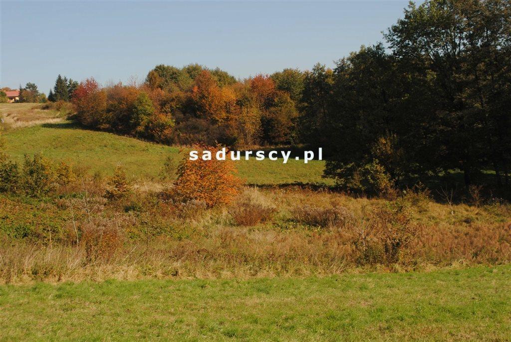 Działka rolna na sprzedaż Kraków, Swoszowice, Rajsko, Golkowicka  2761m2 Foto 2