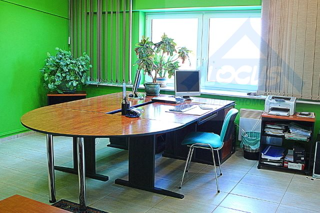 Lokal użytkowy na sprzedaż Nowy Konik  2300m2 Foto 7