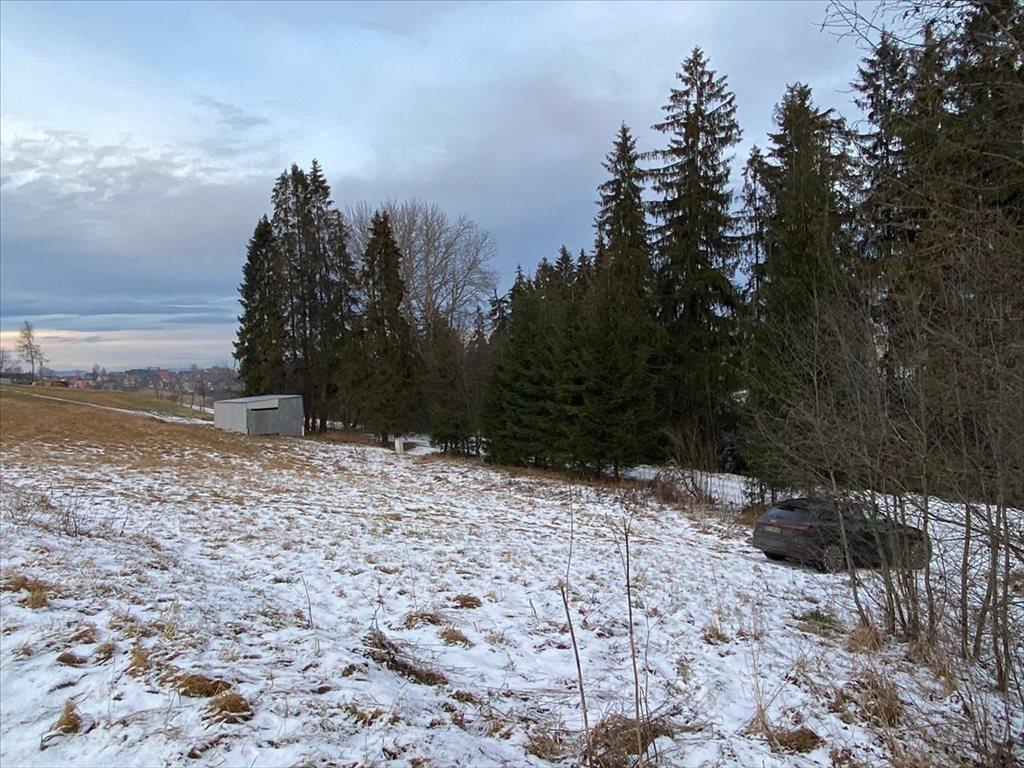 Działka rolna na sprzedaż Bukowina Tatrzańska, Bukowina Tatrzańska  2607m2 Foto 3