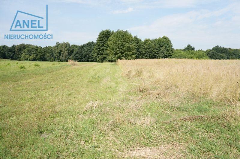 Działka rolna na sprzedaż Mikołów, Paniowy  1086m2 Foto 6