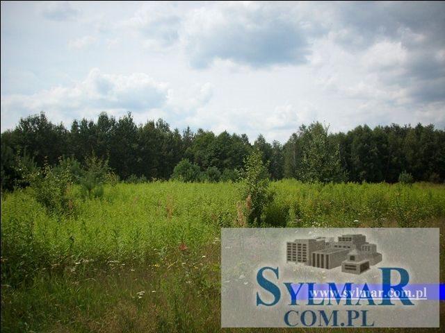 Działka budowlana na sprzedaż Góra Kalwaria, Krzaki Czaplonkowskie, Główna  1000m2 Foto 5
