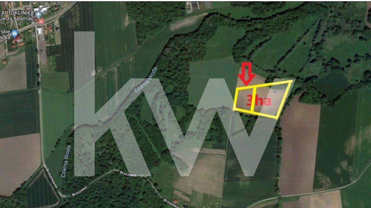 Działka siedliskowa na sprzedaż Kryształowice  10000m2 Foto 1