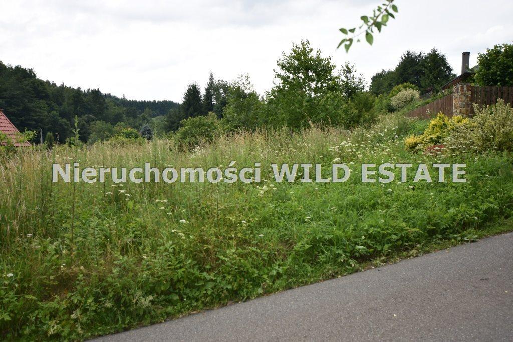 Działka rolna na sprzedaż Lesko, Huzele  1076m2 Foto 3
