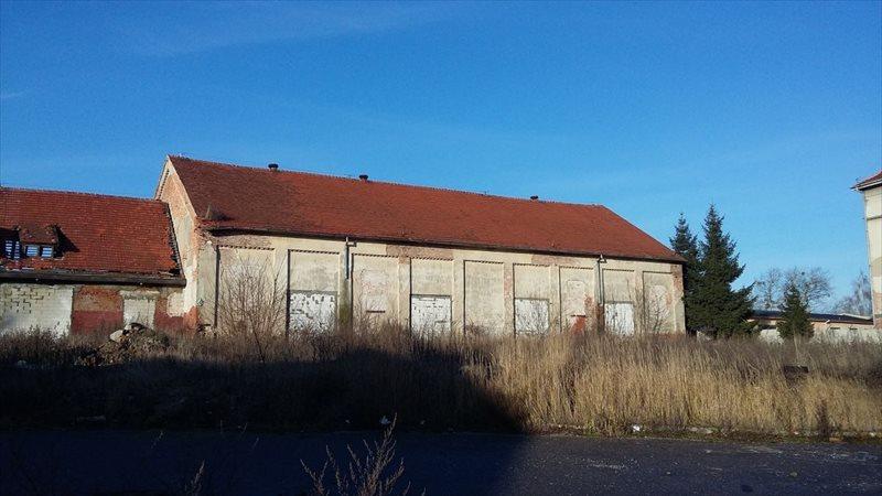 Lokal użytkowy na sprzedaż Grudziądz, Jagiellończyka  1200m2 Foto 1
