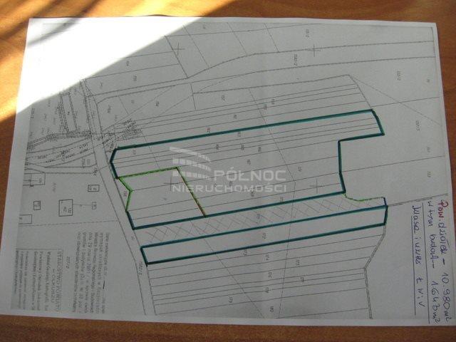 Działka budowlana na sprzedaż Bydlin  10980m2 Foto 8