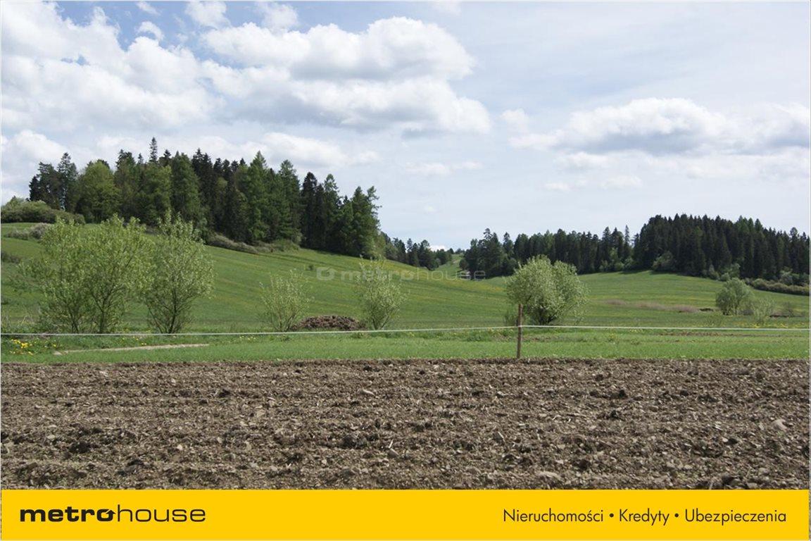 Działka rolna na sprzedaż Niedzica, Łapsze Niżne  1247m2 Foto 4
