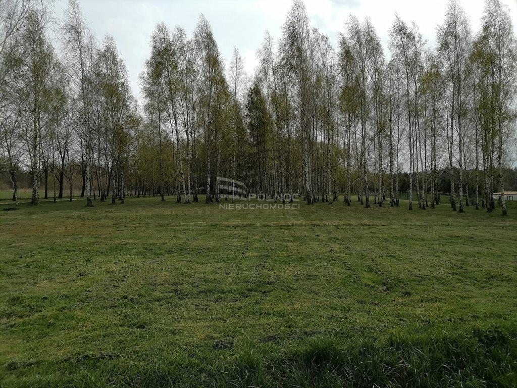 Działka siedliskowa na sprzedaż Rościsławice, Piękna działka siedliskowa  5270m2 Foto 5